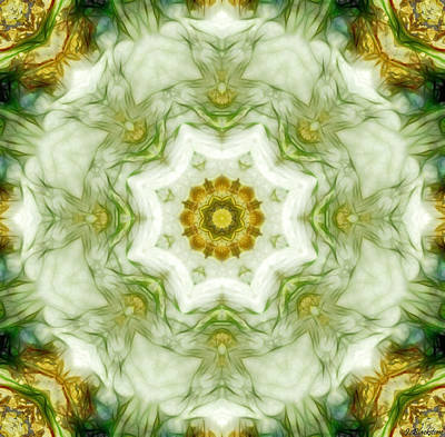 Photograph - The Circle Of Life Kaleidoscope by Jordan Blackstone