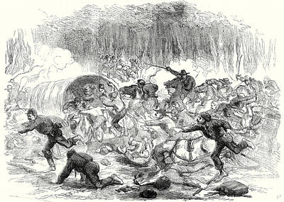 Horse In The Run Drawing - The Civil War In America The Stampede From Bull Run 17 by American School