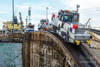 The Climbing Mule Of The Panama Canal Art Print