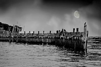 Norwalk Photograph - The Coast Guard by Diana Angstadt