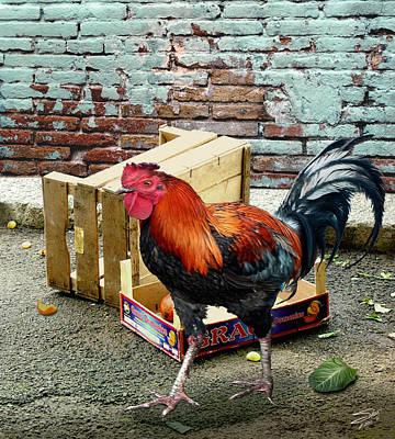Digital Art - The Cockerel's Treasure by IM Spadecaller