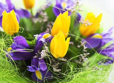 The Color Flower Art Print