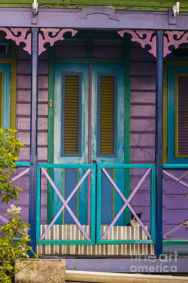 Photograph - The Color Purple by Rene Triay Photography