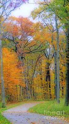 Photograph - The Colors Of Autumn by Kay Novy