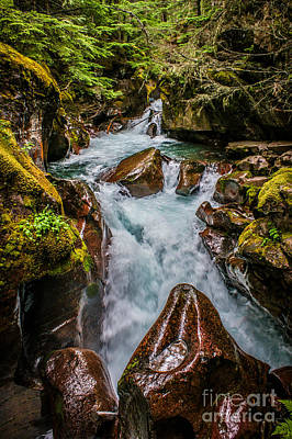 Photograph - The Colors Of Avalanche Creek by Jim McCain
