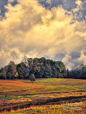 Photograph - The Colors Of Fall by Jai Johnson