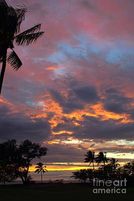 Photograph - the colors of Maui by Peggy Hughes