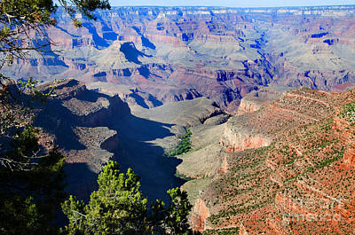 Photograph - The Colors Of The Canyon by Brenda Kean