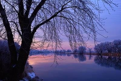 The Colors Of Winter Art Print by Lynn Hopwood