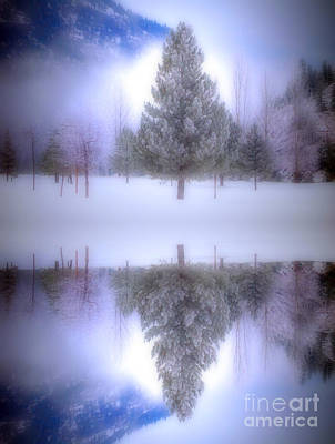 Photograph - The Confidence Of Trees by Tara Turner