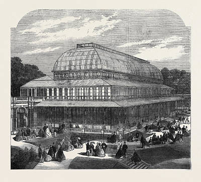 Conservatory Drawing - The Conservatory In The Royal Horticultural Societys by English School