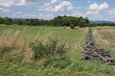The Cornfield-antietam  Original