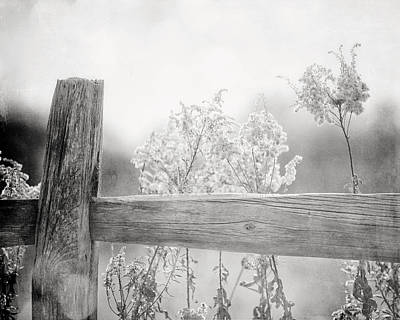 Country Chic Photograph - The Country Fence In Black And White by Lisa Russo