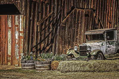Amador County Photograph - The Country Life 3 by Sherri Meyer