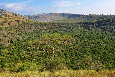 Uganda Wall Art - Photograph - The Crater Area In Queen Elizabeth by Martin Zwick