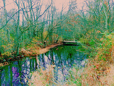 Mixed Media - The Creek by Connie Dye