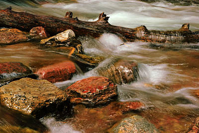 Photograph - The Creek Flows by Daniel Woodrum