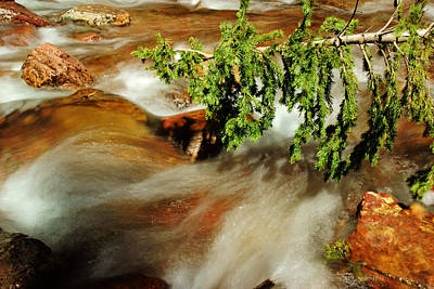Photograph - The Creek Flows No.2 by Daniel Woodrum