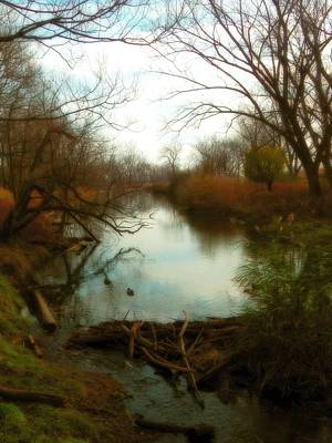 Landscape With Creek Photograph - The Creek by Gothicrow Images