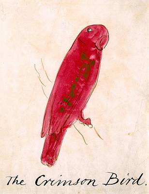 The Claw Drawing - The Crimson Bird by Edward Lear