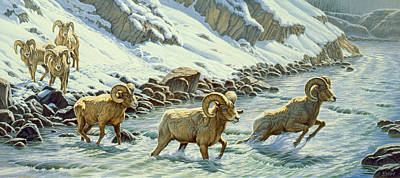 Yellowstone Painting - The Crossing - Bighorn by Paul Krapf