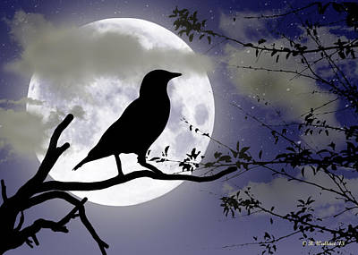 The Crow And Moon Art Print by Brian Wallace
