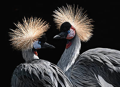 The Crowned Cranes Art Print by Joachim G Pinkawa