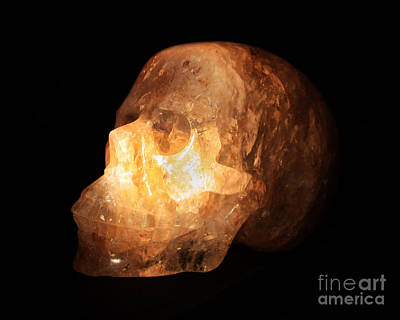 Photograph - The Crystal Skull by Terri Waters