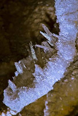 The Crystal Slipper Art Print by Kenan Sipilovic