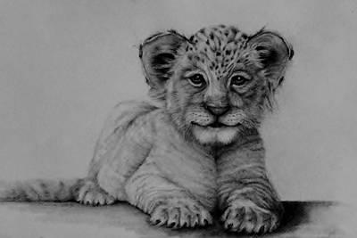The Cub Art Print by Jean Cormier