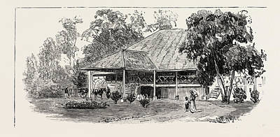The Cultivation Of Tobacco In Sumatra, Indonesia A Planters Art Print by Indonesian School