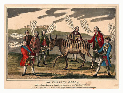 The Curious Zebra Alive From America Walk In Gemmen Art Print by English School