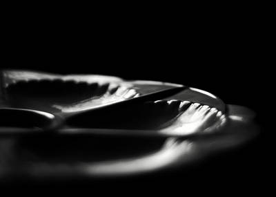 Photograph - The Czech Oyster Plate by Rebecca Sherman