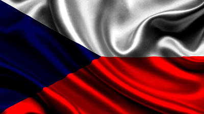 The Czech Republic Flag Art Print