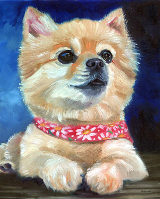 Pomeranian Painting - The Daisy Scarf by Lyn Cook