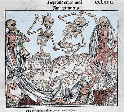 The Dance Of Death (1493 Art Print by Prisma Archivo