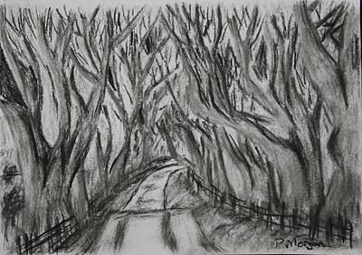Paul Morgan Painting - The Dark Hedges by Paul Morgan