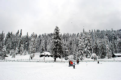 Photograph - The Dazzle Of Winter Trees At Gulmarg - Kashmir- India- Viator's Agonism by Vijinder Singh