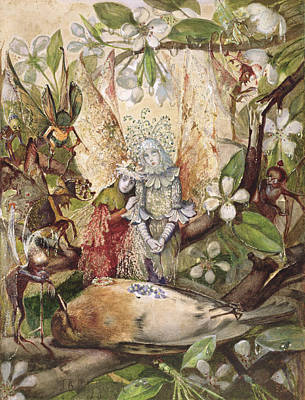 Fairy Drawing - The Death Of Cock Robin by John Anster Fitzgerald