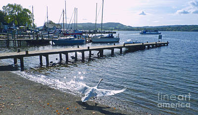 Photograph - The Departure - Windermere by Phil Banks