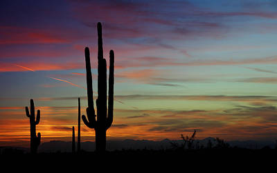 Photograph - The Desert Southwest Skies  by Saija  Lehtonen