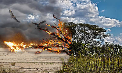 The Destruction Of Our Land Art Print by Ronel Broderick