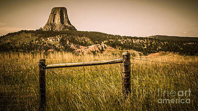 Webster Park Photograph - The Devils Tower by Perry Webster