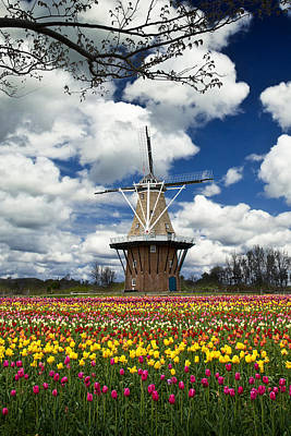 Photograph - The Dezwaan Dutch Windmill Among The Tulips On Windmill Island In Holland Michigan by Randall Nyhof