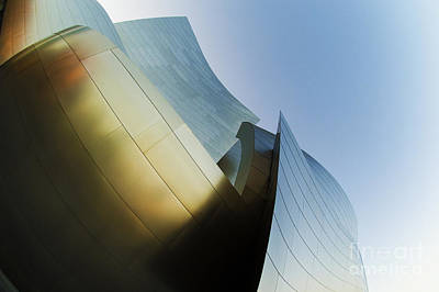 The Disney Concert Hall 14 Art Print by Micah May
