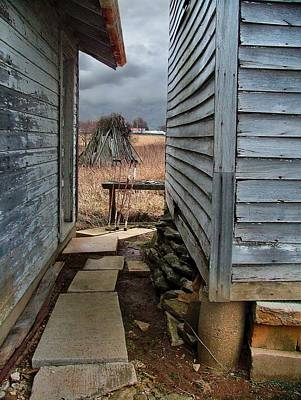Indiana Winters Photograph - The Dog Trot by Julie Dant