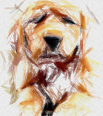 House Pet Digital Art - The Dog by Yury Malkov