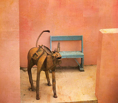 Photograph - The Donkey by Diane Wood