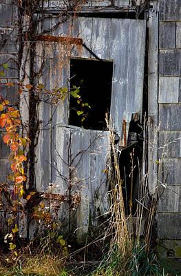 Photograph - The Door by William Jobes