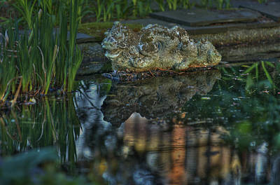 Photograph - The Dragon by Robert Culver